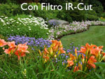 IR-CUT-FILTRO